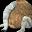 Demon nozuchi icon.png